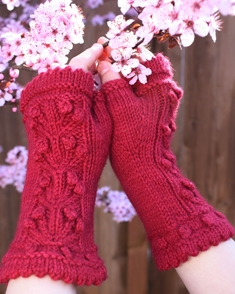 Apple a Day hand mitts_0062