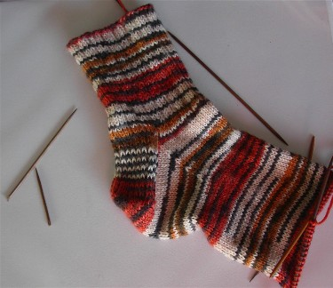 Tiger_sock